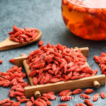 Raw organic goji berry dried fruit lycium berry